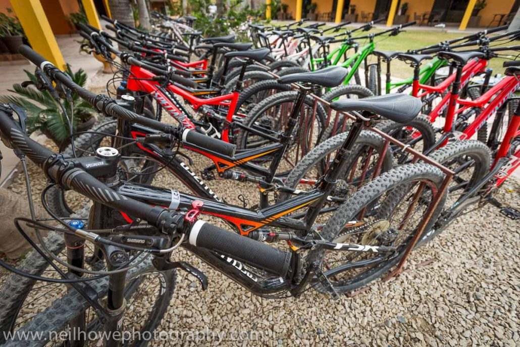 mountain bike fleet