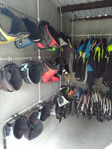 Wetsuits and harnesses for rent